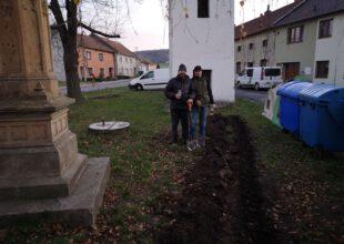 Thumbnail for the post titled: Nové keře rostou u zvoničky